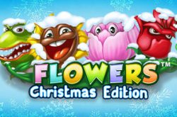 Flowers Christmas Edition Online Slot